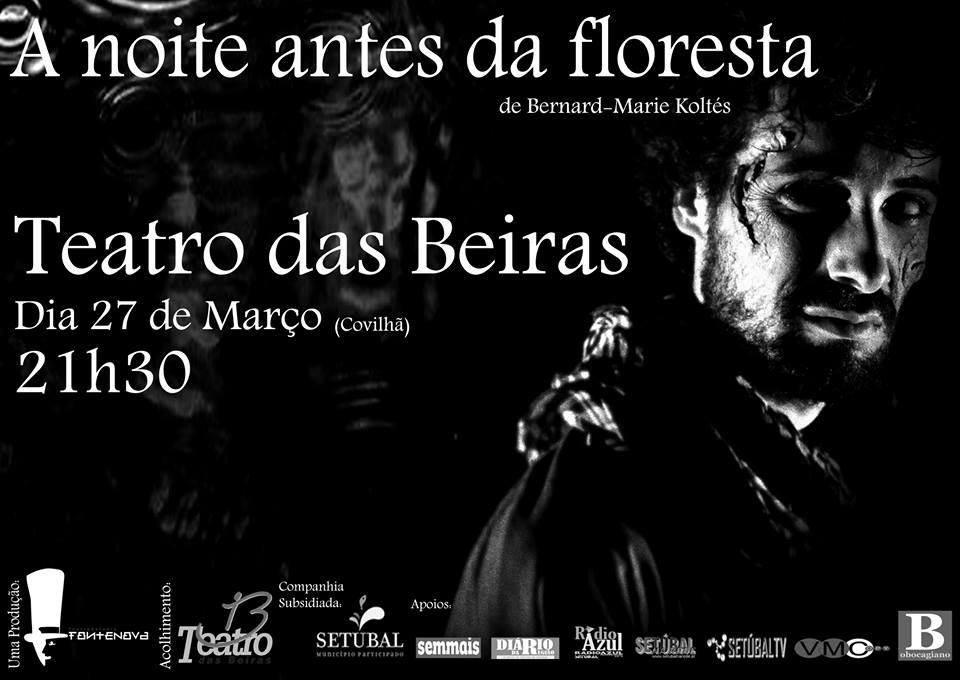 Cartaz A Noite Antes da Floresta - Design Leonardo Silva,
